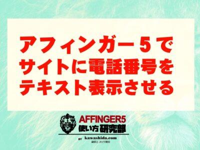 アフィンガー5でサイトに電話番号をテキスト表示させる【AFFINGER5】